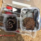 Las diferencias entre tipos de gusanos para Surfcasting.